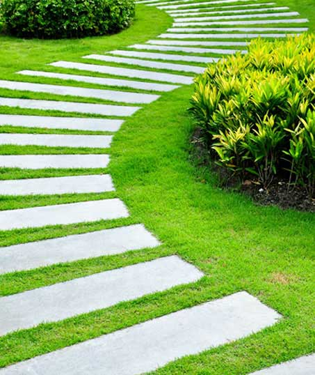 Accurate Outdoor LLC Landscape Construction
