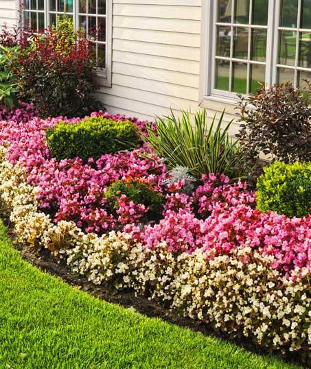Accurate Outdoor LLC Garden Design