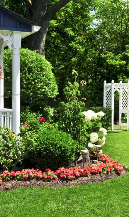 Accurate Outdoor LLC Residential Landscaping