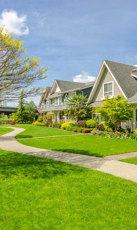Accurate Outdoor LLC Residential Lawn Care