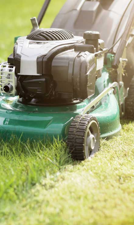 Accurate Outdoor LLC Residential Lawn Mowing