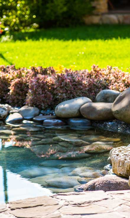 Accurate Outdoor LLC Residential Water Features