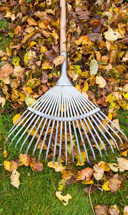 Accurate Outdoor LLC Commercial Grounds Maintenance